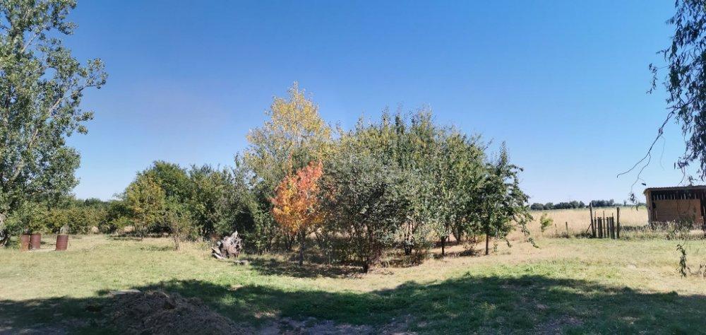 Aire camping-car à Fajolles (82210) - Photo 1